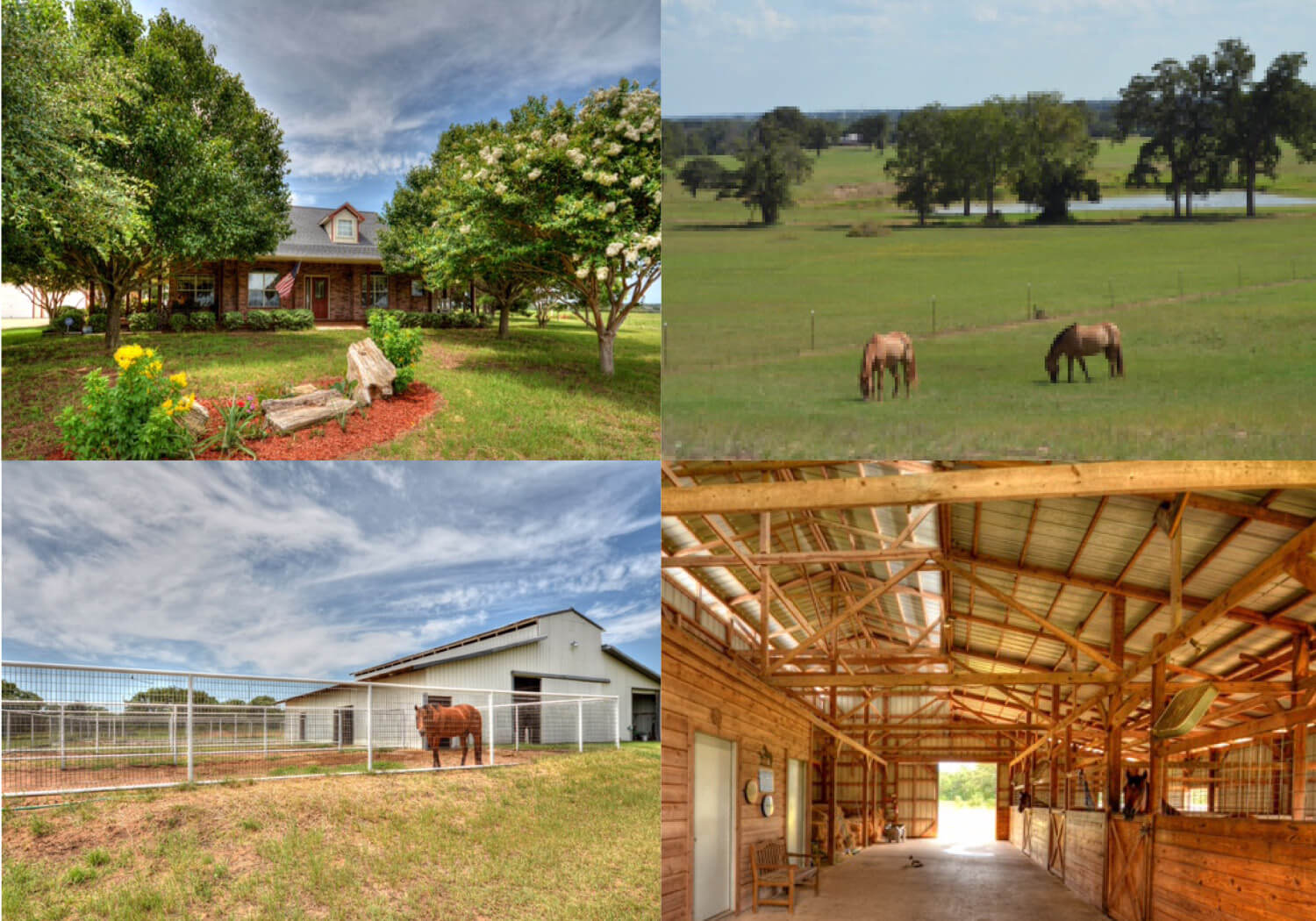 Bastrop Horse Property for Sale